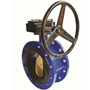 Double Flanged Type Butterfly Valve